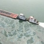 Galveston Bay Spill Will Take Economic, Ecological Toll